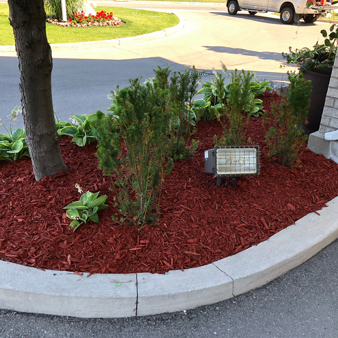 Gardening and mulching services - Silverbel Landscaping & Snowplowing