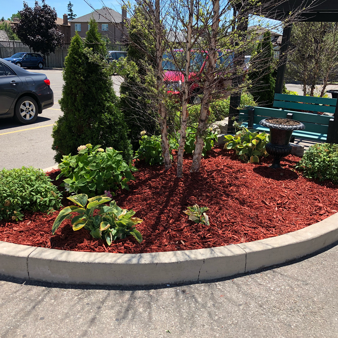 Landscape design services - Silverbel Landscaping & Snowplowing