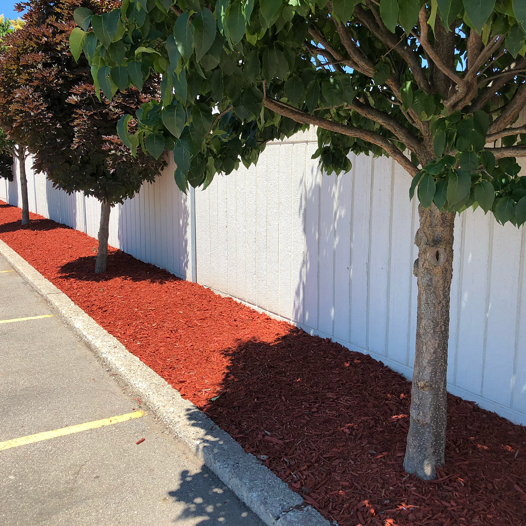 Commercial landscape design services - Silverbel Landscaping & Snowplowing