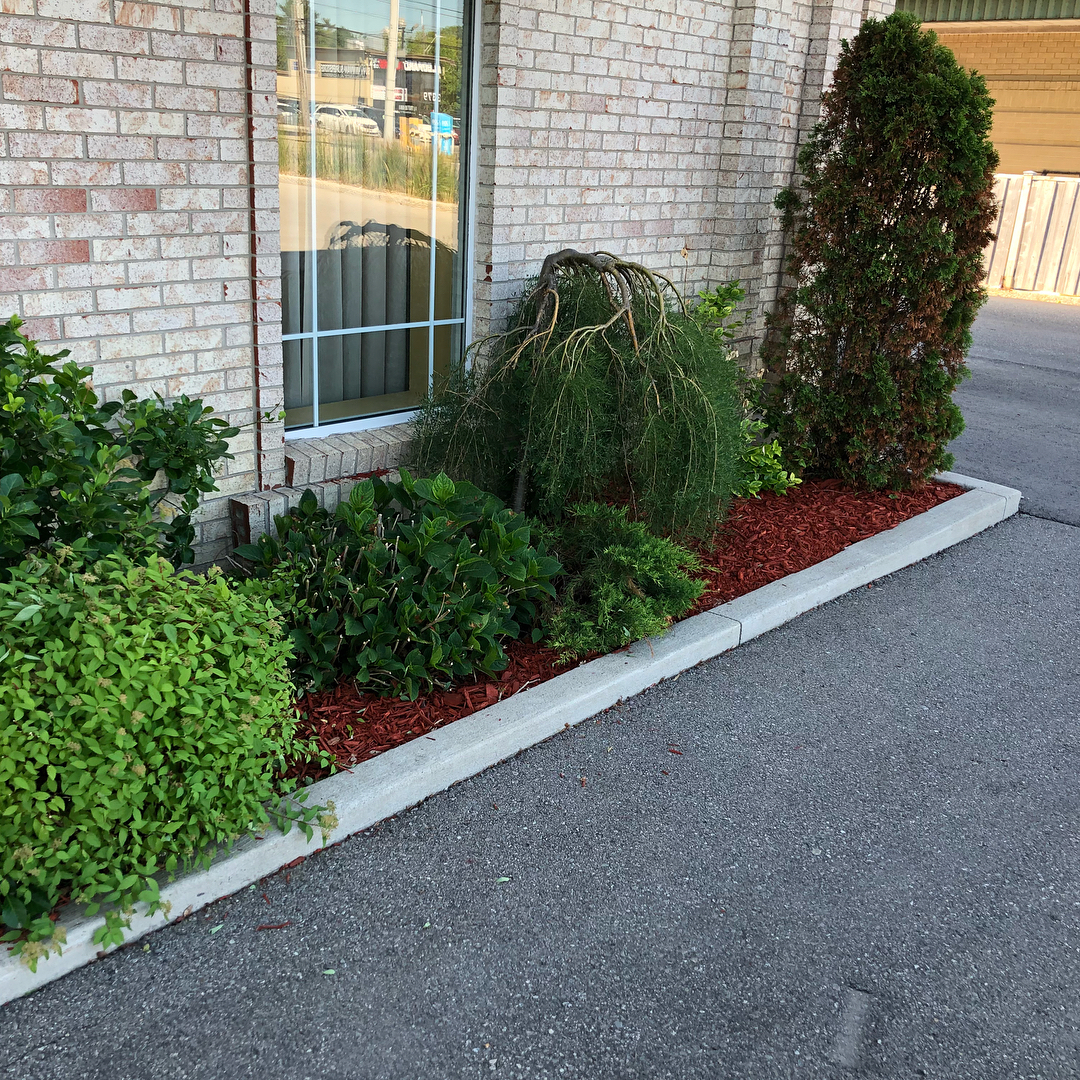 Commercial landscape design - Silverbel Landscaping & Snowplowing