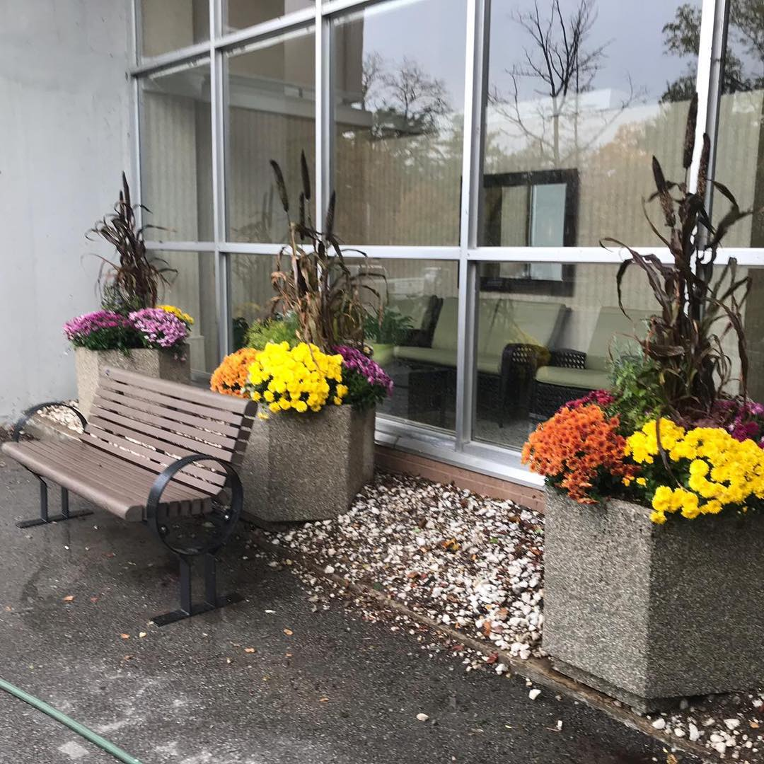 Professional commercial gardening - Silverbel Landscaping & Snowplowing
